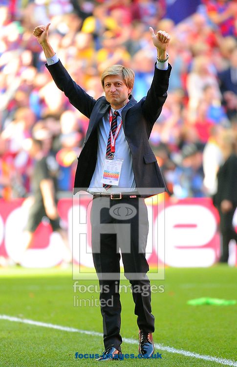 Picture by Seb Daly/Focus Images Ltd +447738 614630.27/05/2013.Co-owner of Crystal Palace, Steve Parish celebrates his side's promotion to the Premier League after winning the npower Championship play off final at Wembley Stadium, London.