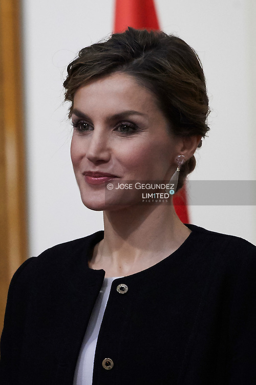 Queen Letizia of Spain attended the Delivery Gold Medals of Merit in Fine Arts 2014 at Bellas Artes Museum on December 2, 2015 in Sevilla, Spain