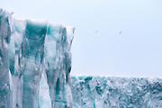 "This glacier is called ""Bråsvellbreen"" and is located at Nordaustlandet, Spitzbergen | Bråsvellbreen på Nordaustlandet, Svalbard"