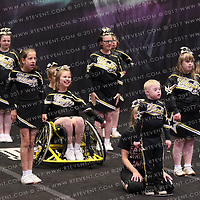 1091_Unity Allstars Gold - Special Needs Cheer SNC