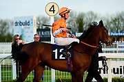 Nahham ridden by Seamus Cronin and trained by Richard Hannon in the Follow Us On Twitter @Valuerater Novice Stakes race.  - Mandatory by-line: Ryan Hiscott/JMP - 01/05/2019 - HORSE RACING - Bath Racecourse - Bath, England - Wednesday 1 May 2019 Race Meeting