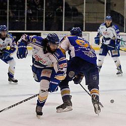 Fife Flyers v Hull Stingrays | Elite Ice Hockey League | 17 January 2015