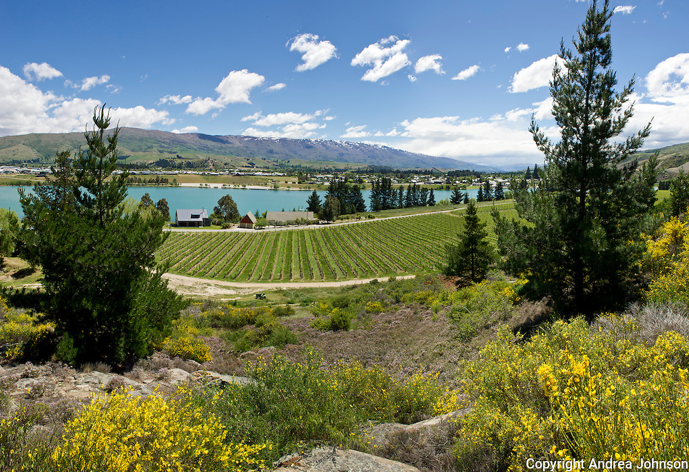 Felton Road biodynamic winery, Central Otago, New Zealand