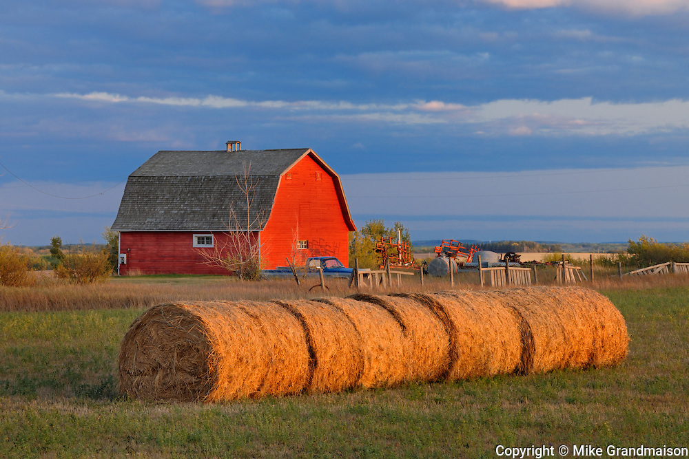 Red barn and bales at sunset<br /> Grande Prairie <br /> Alberta<br /> Canada