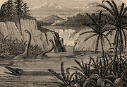 Ideal flora and fauna of the Liassic period including Ichthyosaurus and Plesiosaurus.  From 'The Popular Educator' (London, c1855).   Engraving.