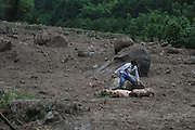LANSHAN, CHINA - (CHINA OUT)<br /> A man tries to catch his pigs at a landslide-hit area  in Lanshan County, Hunan Province of China. Floods and mudslides triggered by typhoon Utor have killed 9 people in Hunan province.<br /> ©Exclusivepix