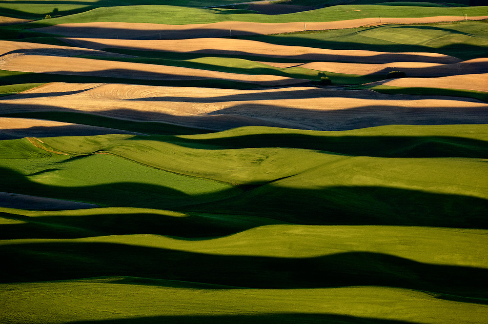 The Palouse of Washigton is an area of loess hills built out of wind-blown dust.  High hills are extremely fertile, with exceptional production of dryland wheat.