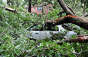 A car is seen crushed in the aftermath of Hurricane Irene in Takoma Park, Maryland on August 28, 2011. The Category 1 storm did relatively little damage but has left half a million people without power in the D.C. metro area.  UPI/Kevin Dietsch