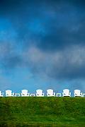 Sunlit Adirondack Chairs