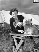 04/08/1952 <br />
