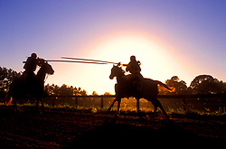 Stock photo of two men on horseback jousting at sunset at the Texas Renaissance Festival in Plantersville Texas