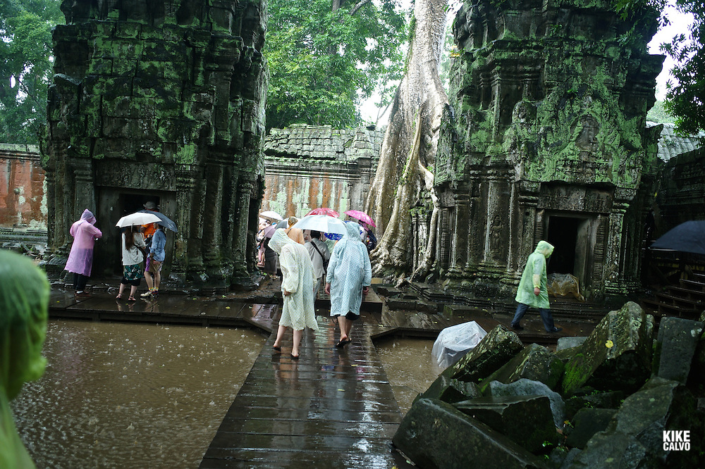 Ancient ruins of Ta Prohm Temple, Angkor, Cambodia.
