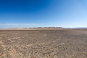 Israel, Negev Desert landscape. The Bulbus rock field in front of Mount Zin