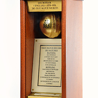 Bradman Bat-Botham Ball