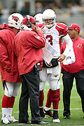 Arizona Cardinals quarterback Carson Palmer (3) has a sideline conference with Arizona Cardinals head coach Bruce Arians during the 2015 NFL week 6 regular season football game against the Pittsburgh Steelers on Sunday, Oct. 18, 2015 in Pittsburgh. The Steelers won the game 25-13. (©Paul Anthony Spinelli)
