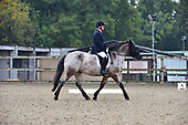 12 - 25th Sept - Dressage