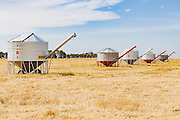 Mobile field bin grain silos in paddock after wheat harvest near Rupanyup, New South Wales, Australia