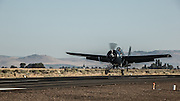FM-2 Wildcat of the Erickson Aircraft Collection landing.