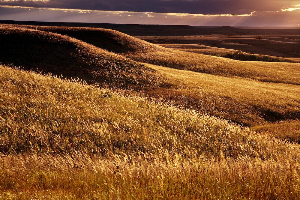 Sunset in the Flint Hills at the Konza Prairie Natural Research Area near Manhattan, Kansas.