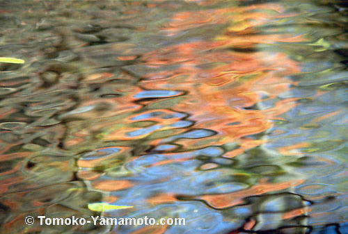 "A close-up of ripples and bubbles on the water surface in autumn: an impressionist reflection photo by Tomoko Yamamoto. The bubbles in this photo are not solidly black, but they are ripples with black outlines.  Some are showing the reflection of a  blue sky.  Next to the ""black bublles"" are firing red reflections of red leaves in wavy form.  Light green patches are due to floating leaves on the water surface. Original on 35mm slide film."