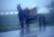 Amish buggy travel, foggy, rainy, Lancaster, PA