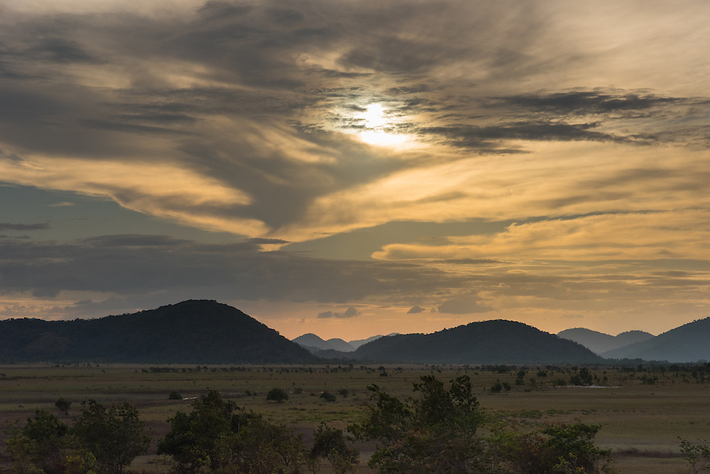 Savannah landscape of the Rupununi at sunset, Rupununi, Guyana.