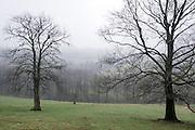 winterliche Landschaft Vogelsberg, Hessen, Deutschland