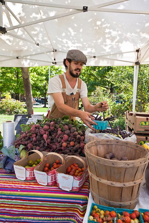 Matchbox Gardens  produce at Sorauren farmers market in Toronto