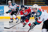 KELOWNA, CANADA -FEBRUARY 19: Beau McCue #16 of the Tri City Americans skates against the Kelowna Rockets on February 19, 2014 at Prospera Place in Kelowna, British Columbia, Canada.   (Photo by Marissa Baecker/Getty Images)  *** Local Caption *** Beau McCue;