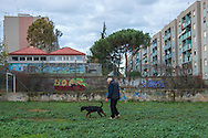 Roma, 02/12/2014: Case popolari in via Giorgio Morandi, Tor Sapienza, anziano con cane - <br /> The popular neighborhood of Tor Sapienza.