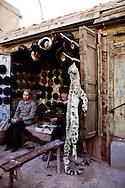 China, Xinjiang Province, Kashgar or Kasgar, Uyghur or Uygur hat shop with Snow Leopard, endangered species