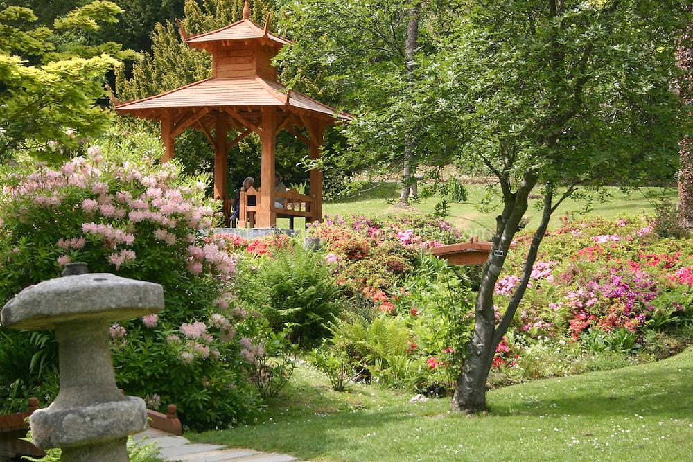 Japanese gardens at Powerscourt House and gardens, Co Wicklow, Ireland