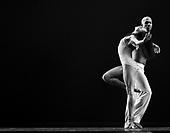 2014 - Alvin Ailey Fall