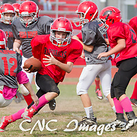10-23-14 Mighty Mite 5th & 6th Grade Football Championship Razorback vs.Wild Hogs