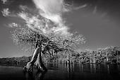 Florida Black & White Part 1