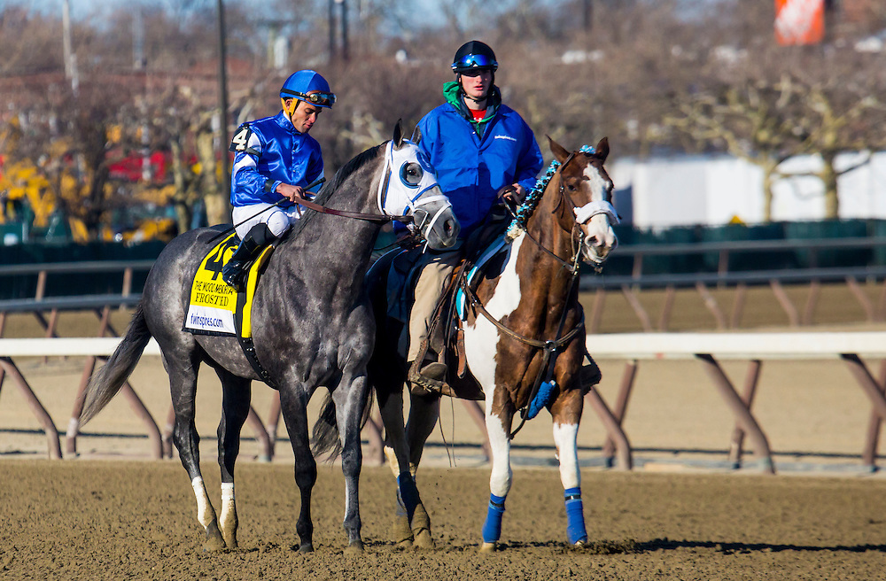 """(2) This is a Series of 11 photos, beginning with the post parade culminating with the stretch drive for the 2015 Wood Memorial. The race was won by """"Frosted"""", number 4, a grey horse with jockey Joel Rosario aboard in blue silks."""