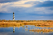 Cape Hatteras lighthouse reflected in the wild marshy landscape on the Outer Banks of NC.