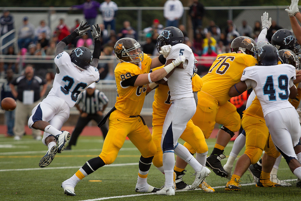 Rowan University Sophomore TE Matt Hughes (89) -  Rowan University Football vs Wesley College at Richard Wacker Stadium in Glassboro, NJ on Saturday October 19, 2013. (photo / Mat Boyle)