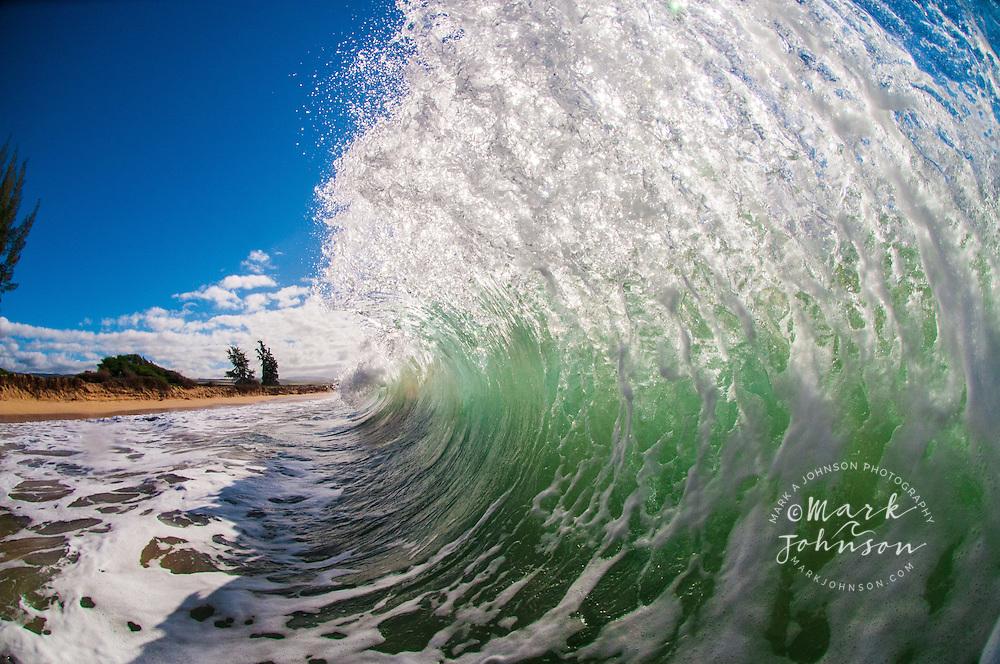 Backlit wave, Hawaii