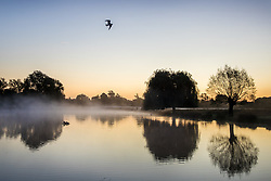 © Licensed to London News Pictures. 06/10/2017. London, UK. First light at Heron Pond in Bushy Park. A high of 15 centigrade is expected in parts of the south today. Photo credit: Peter Macdiarmid/LNP