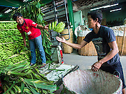 07 JULY 2014 - BANGKOK, THAILAND: Men sort bananas in the fruit section of the flower market in the old section of Bangkok.      PHOTO BY JACK KURTZ