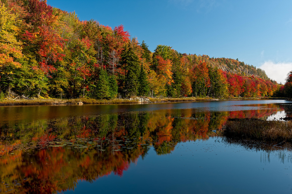Fall Foliage Old Forge NY