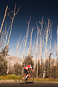 2013 Falls Creek Bunch