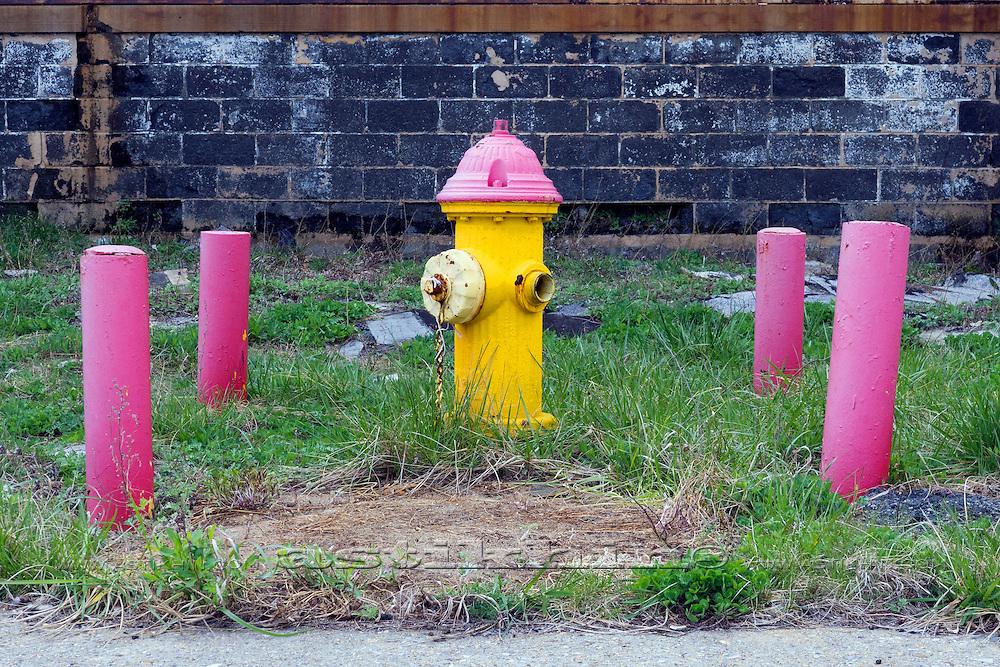 Funny Hydrant.