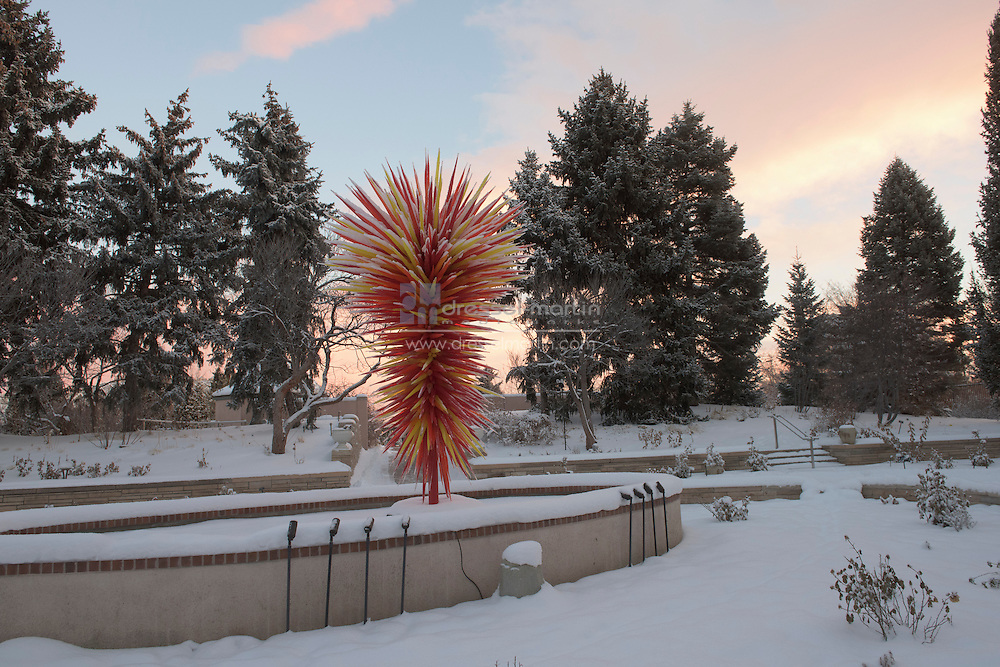 chihuly in ellipse garden snow