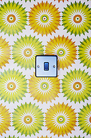 Light switch on flowery wallpaper