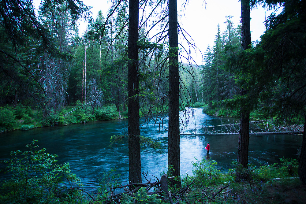 Metolius River in central Oregon.