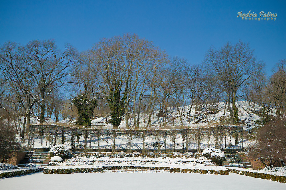 Winter at the Conservatory Garden Central Park Andria Patino