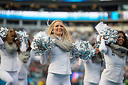 January 17, 2016: Carolina Panthers vs Seattle Seahawks. Carolina Panthers cheerleaders