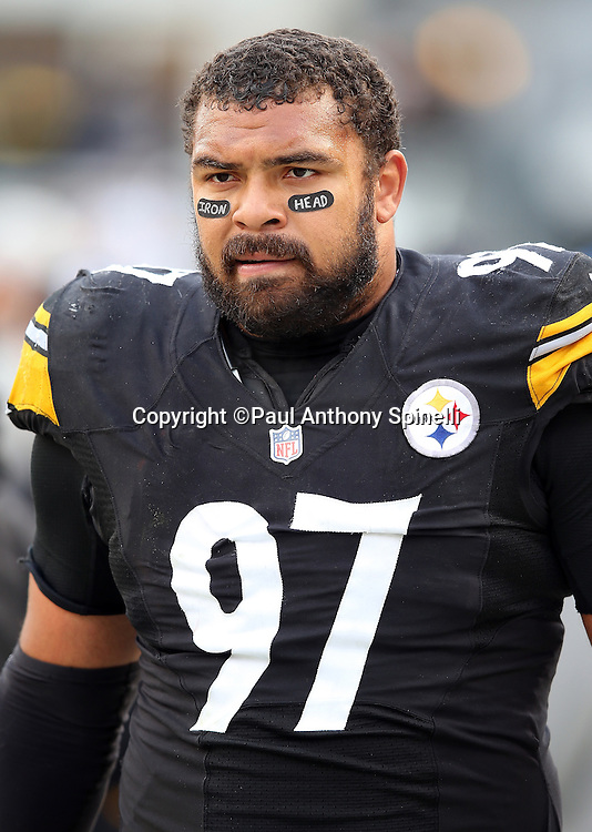 "Pittsburgh Steelers defensive end Cameron Heyward (97) wears eye black with the words ""Iron Head"" on them in memory of his father, former New Orleans Saints running back Craig ""Ironhead"" Heyward, who died of brain cancer, before the 2015 NFL week 6 regular season football game against the Arizona Cardinals on Sunday, Oct. 18, 2015 in Pittsburgh. The Steelers won the game 25-13. (©Paul Anthony Spinelli)"